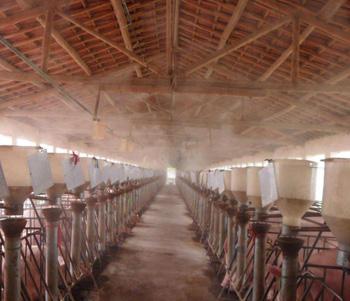 畜牧养殖业如何解决消毒问题,促进存活率